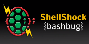 shellshock-siteblindado
